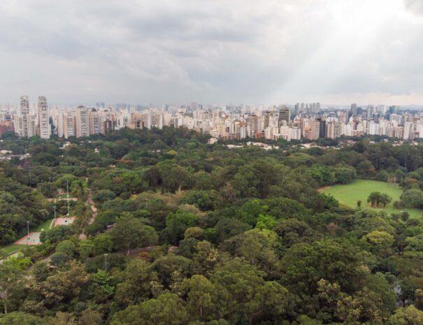 Sao Paulo Tour Ibirapuera park aerial view
