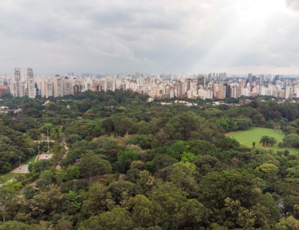 Sao Paulo Helicopter Tour aerial view
